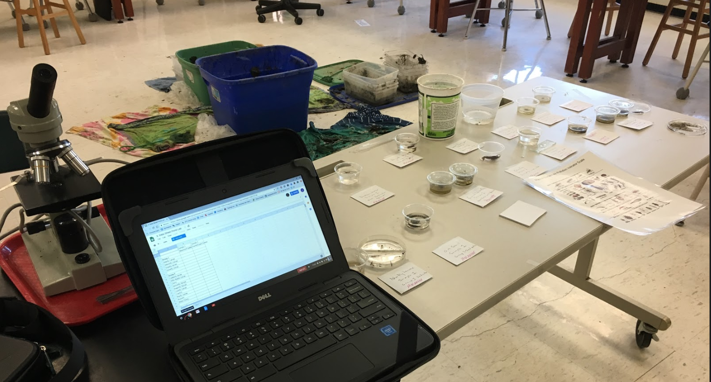 photo of petri dishes and chromebook