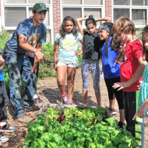 Jackson St. School Garden Provides Hands-On Education