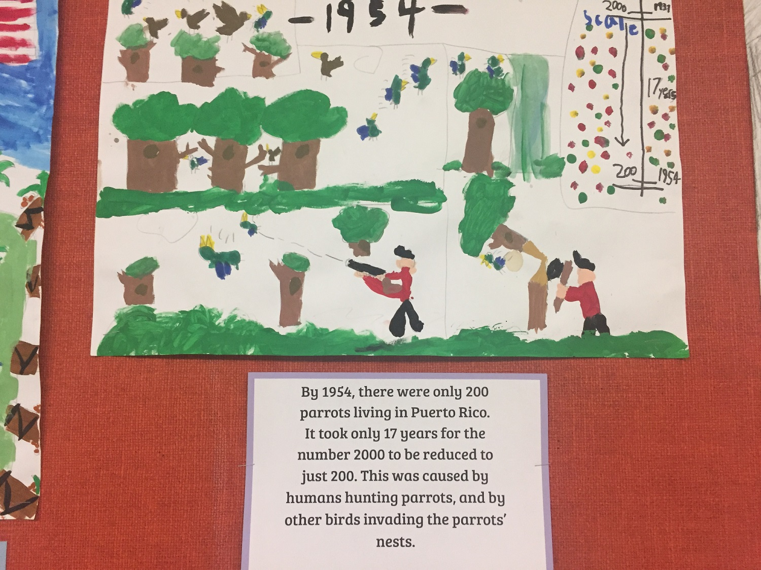 student drawn image of hunters shooting parrots with text below