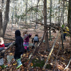 Forest Fridays at Ryan Road School
