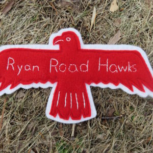 What the Hawk Saw at Ryan Road!