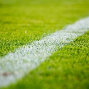 Outdoor Fertilization and Pesticide Notification for NHS Playing Fields