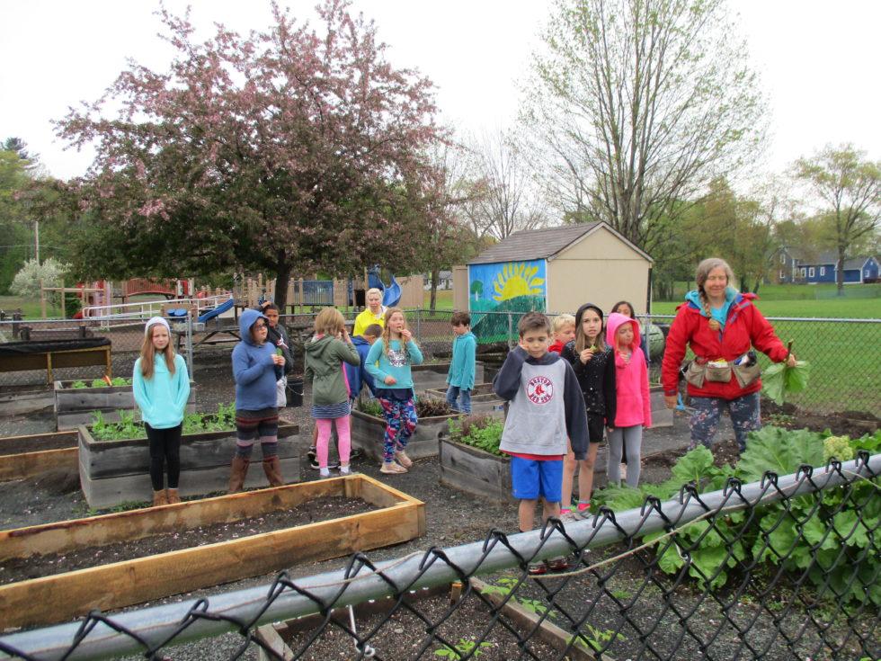Principal Madden's Weekly Update—Week of May 20