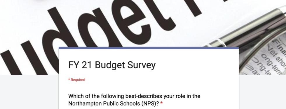 2021 Budget Survey