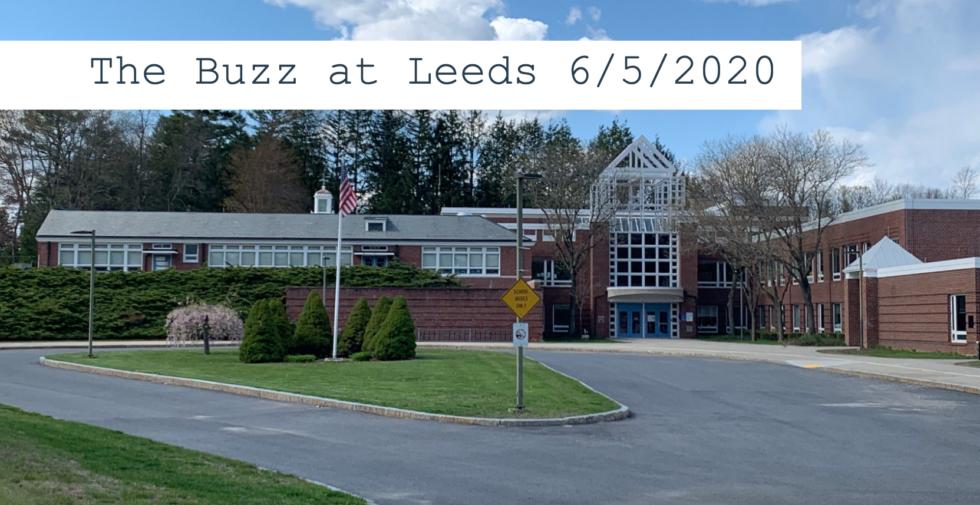 The Buzz at Leeds 6/5/2020