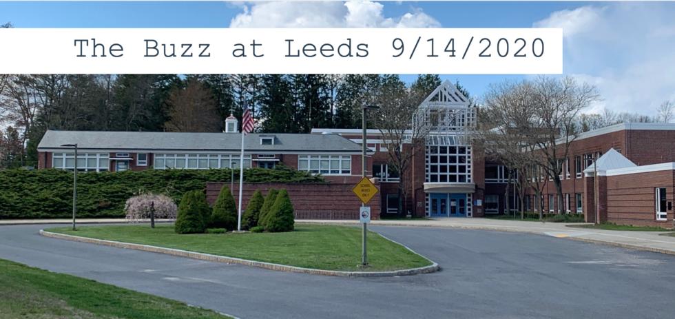 The Buzz at Leeds 9/14/2020